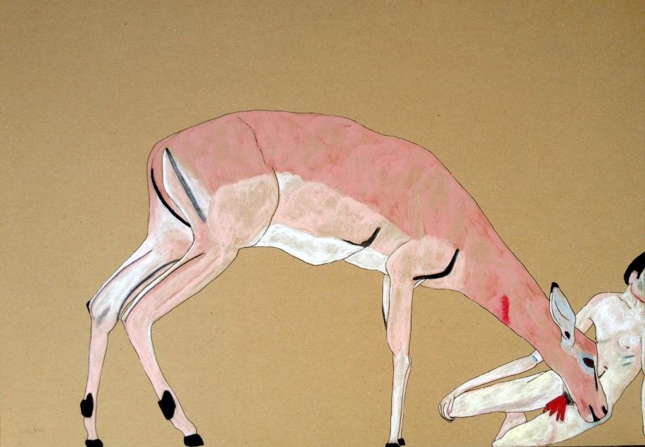 antelope /\ אנטילופה
