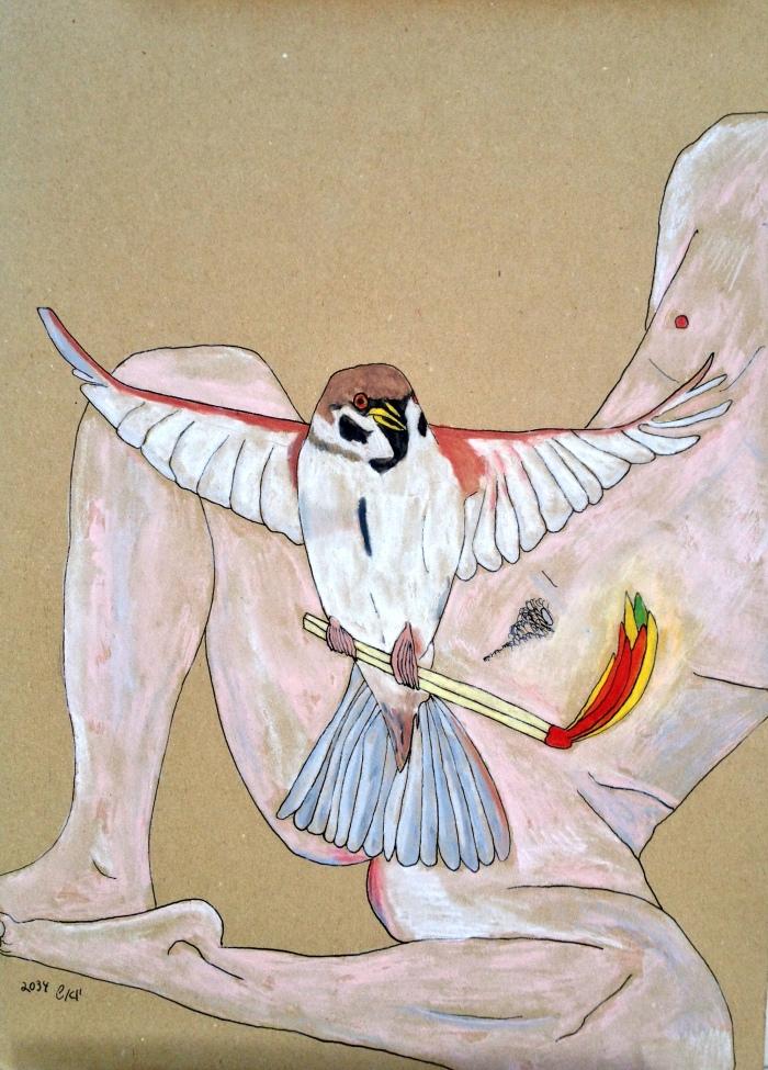 הציפור